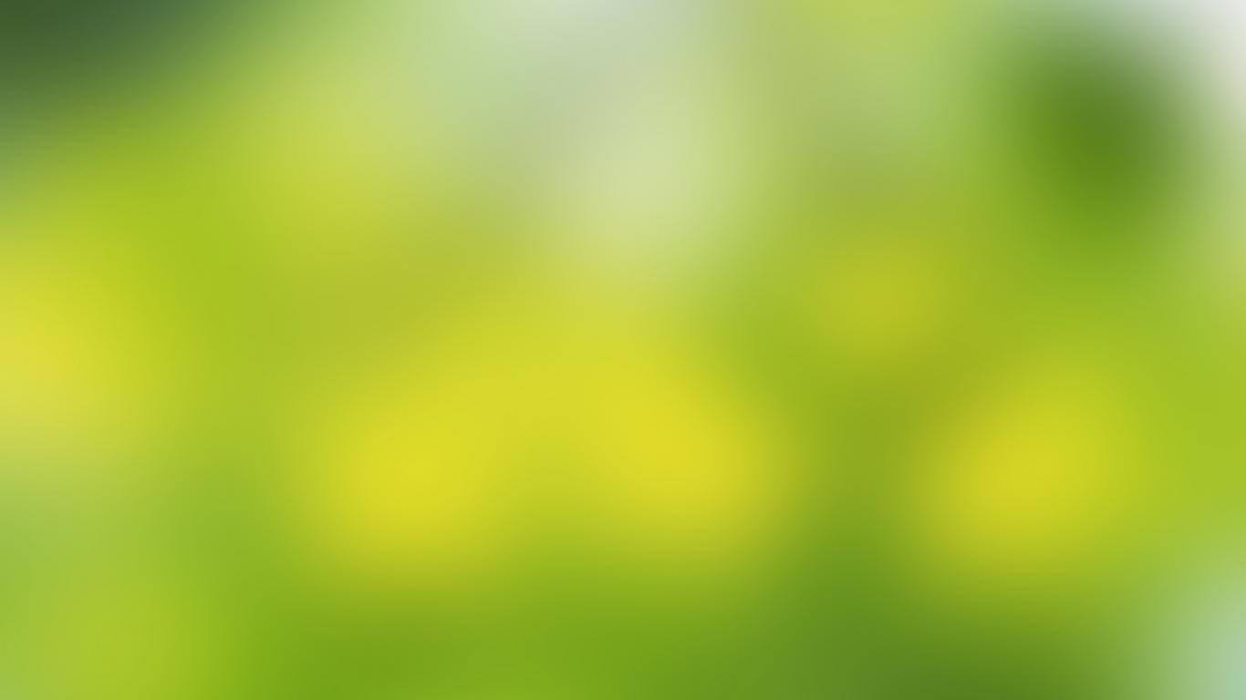 soft-green-1366x768-wallpaper-761