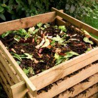 Hasznos információk a komposztáláshoz